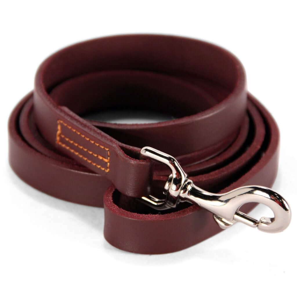 Leather Training Leash for Dogs
